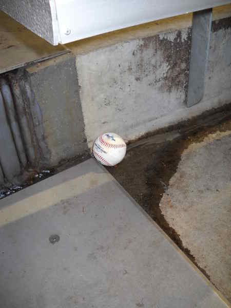 Easter Egg in the Bleachers